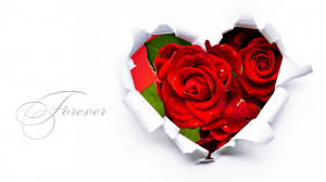 Red Roses Image With Love Quotes 1 300x168 Red Roses Image With Love ...