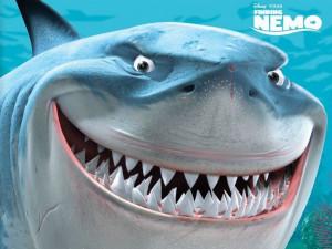 Finding Nemo Finding Nemo, Bruce the Shark Wallpaper