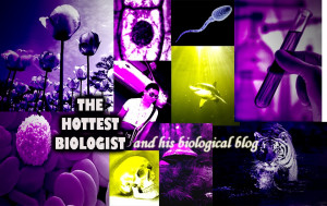tuesday october 19 2010 mr david biology quotes i create some stupid ...