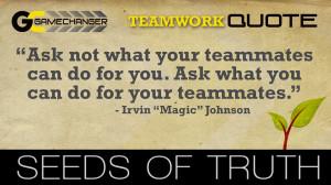 Character Traits - Teamwork - Irvin