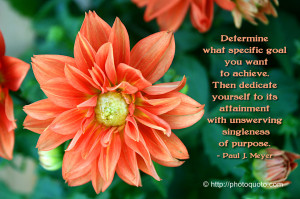 Sayings, Quotes: Paul J. Meyer