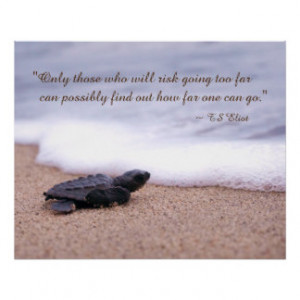 Inspiring Quote Baby Sea Turtle Sand Ocean Print