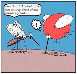 Food Allergy Memes Funny Lots Pics