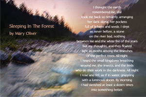 Poem on image taken from Karen Ancas website