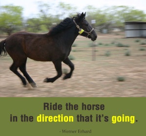 quotes about riding inspirational quotes from inspirational horse ...