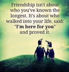 Friendship isn't about who you have known the longest. It's about who ...
