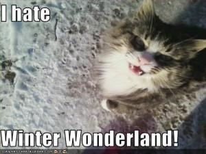 hate winter   hate Winter Wonderland!