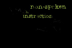 Quotes Picture: let me be the nonspoken instruction people need to ...