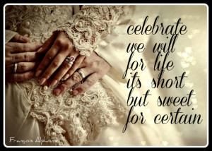 AQC Creation and Wedding Services