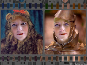 Lion Tinman Wizard Of Oz Inspirational Life Quotes