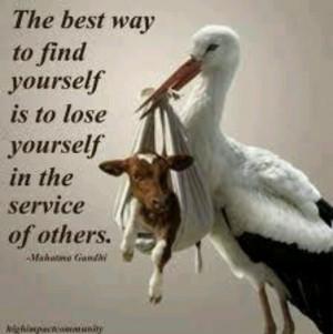 Ghandi quote losing oneself in the service of others