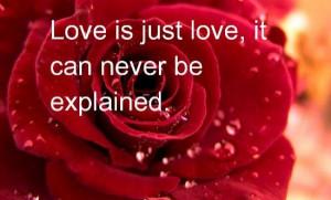 Honeymoon in Valentine Day Romantic Quotes
