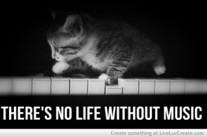 ... cat on a piano, love, pretty, quotes, quote, cute, theres no life