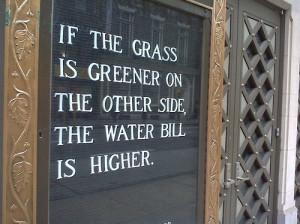 attitude, fun, funny, grass, green, greener grass, inspiration, life ...