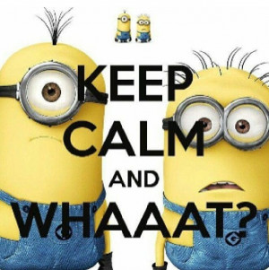 Despicable Me Quotes Funny Best Sayings Cartoon