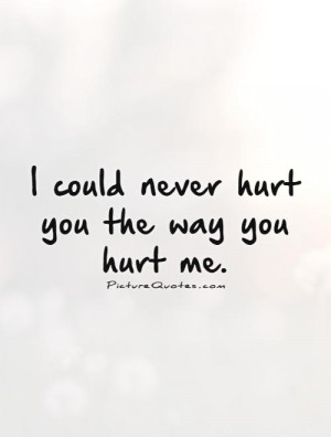 could never hurt you the way you hurt me. Picture Quote #1