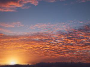 Beach Sunrise Massachusetts