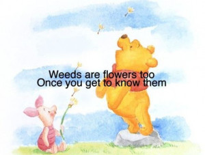Wise Quotes From Winni Pooh (15 pics)