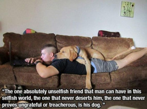 This Post For All Dog Lovers
