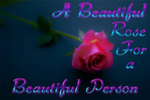 Beautiful Rose For a Beautiful Person
