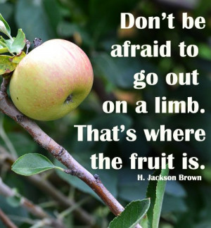Don't be afraid to go out on a limb. That's where the fruit is ...