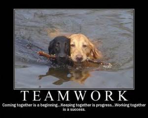 url=http://www.pics22.com/teamwork-dog-quote/][img] [/img][/url]