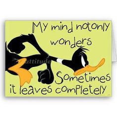 quotes visit roflburgercom mindfulness funny daffy ducks funny quotes ...