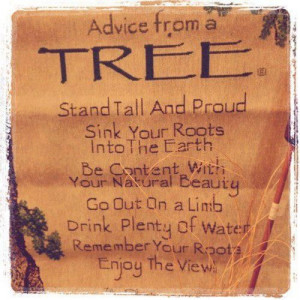 ... on a limb. Drink plenty of water. Remember your roots. Enjoy the view