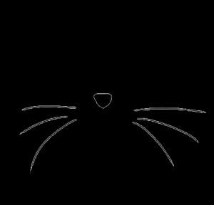 cat Black and White transparent cat whiskers transparent cat