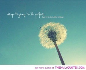 quotes about trying - Google Search