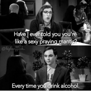 Amy Farrah Fowler and Sheldon Cooper, The Big Bang Theory