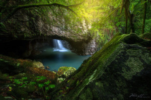 ... nature forest amazing fantasy river pagan wicca mother nature