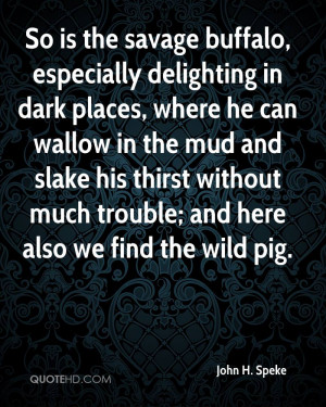 buffalo, especially delighting in dark places, where he can wallow ...