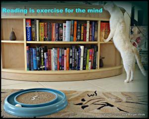 Reading Quote Cat Exercise