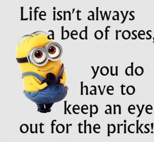 bedtime quotes and sayings By Minions....(5 Photos)