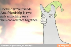 llamas # hats # friendship # quote