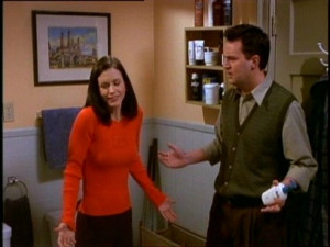 Monica Geller Quotes About Cleaning 5x14 did you clean