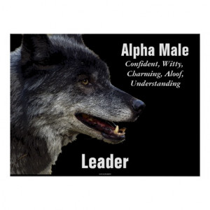 Alpha Male Grey Wolf Motivational Poster