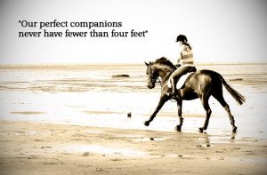 famous quotes, horse, beach, horse riding