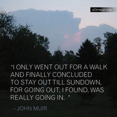 john muir more john muir quotes favorite john muir quote