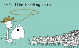 it s like herding cats herding herd cats lasso horse ralph ralph the ...