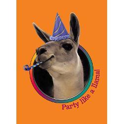 llama_birthday_party_invitations_6.jpg?height=250&width=250 ...