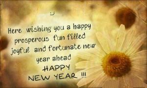 ... fun filled joyful and fortunate new year ahead, happy new year