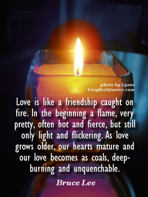 Love quotes - Love is like a friendship caught on fire. In the ...