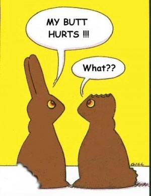 segment of Funny Easter Pictures which is grouped within easter, funny ...