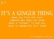 Funny ginger quotes