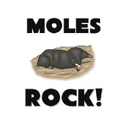 moles_rock_greeting_cards_pk_of_10.jpg?height=250&width=250 ...