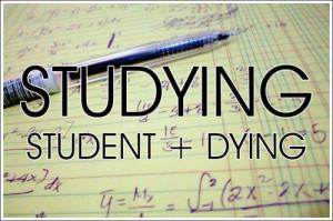 funny exam stress quotes