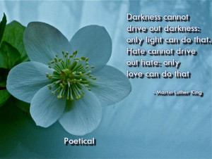 Darkness cannot drive out darkness: only light can do that. Hate ...