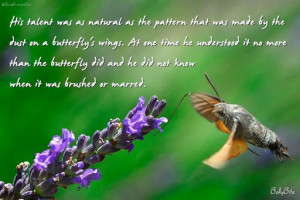 Cute Quotes About Butterflies